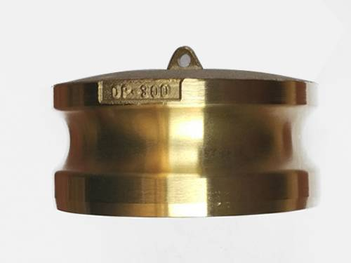 A brass camlock adapter part DP is on the white background.